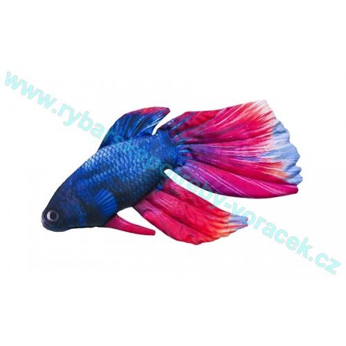 Polštář Bojovnice pestrá 53cm plyšová ryba