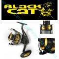 Black Cat Passion 640 FD